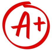 Grade A Plus result vector icon. School red mark handwriting A plus in circle